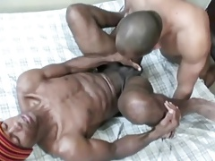 Boi gets Used - Hole Wrecker